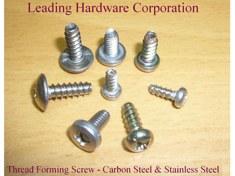 Thread Foring Screw - Carbon Steel & Stainless Steel